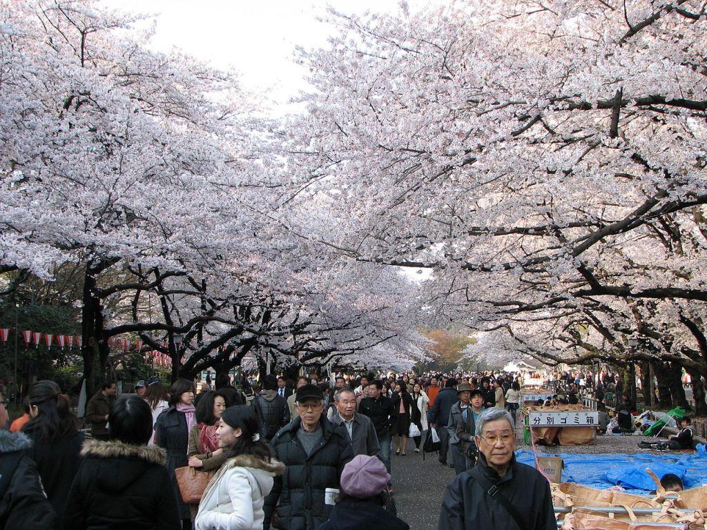 01 Ueno Park - Wikipedia