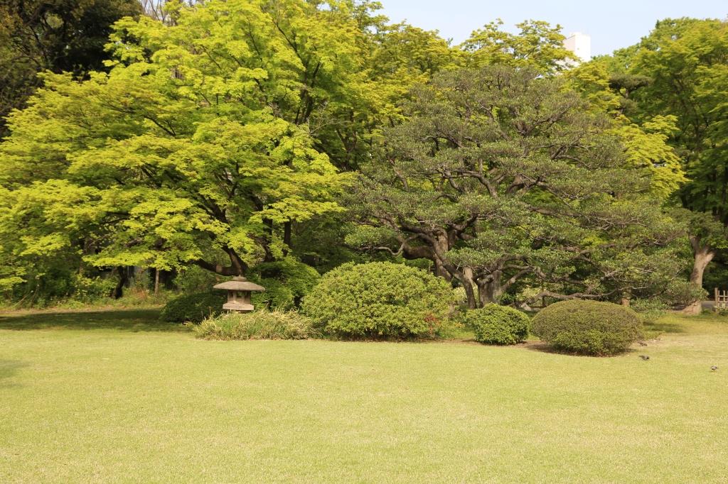 02 Rikugien Garden