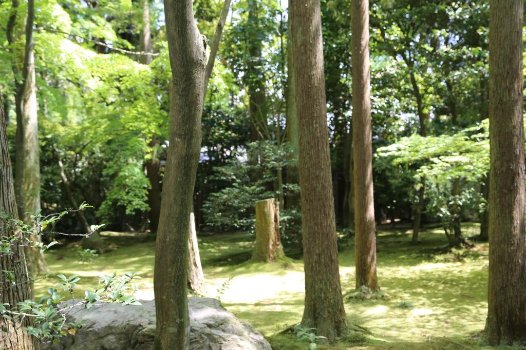 08 Ryōan-ji