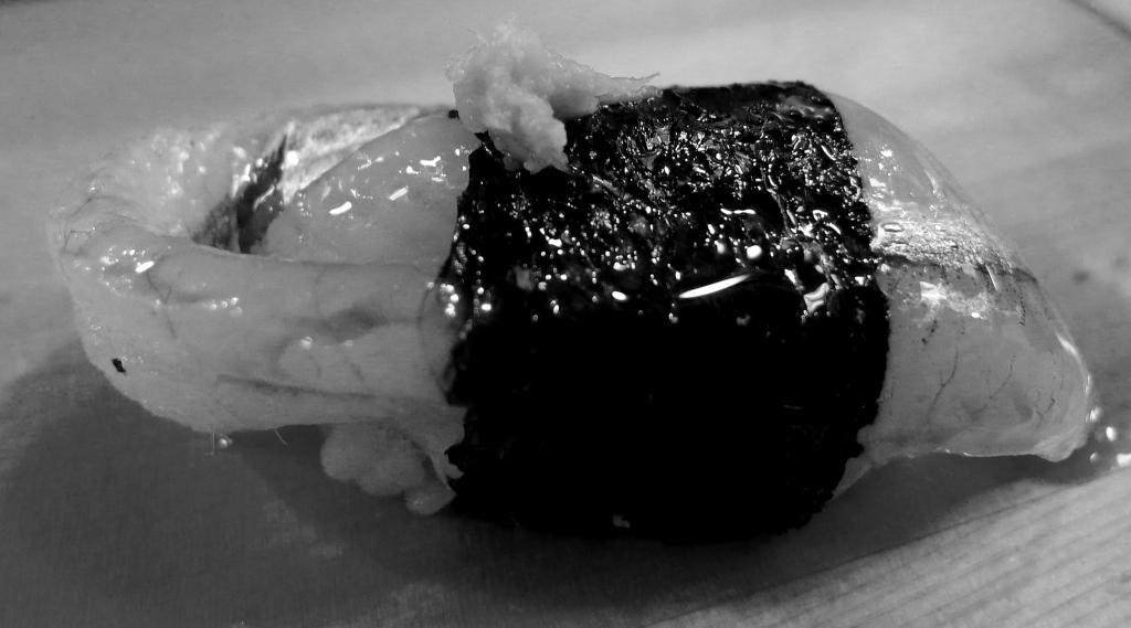 08 Sushi Daiwa - Sayori Halfbeak BW