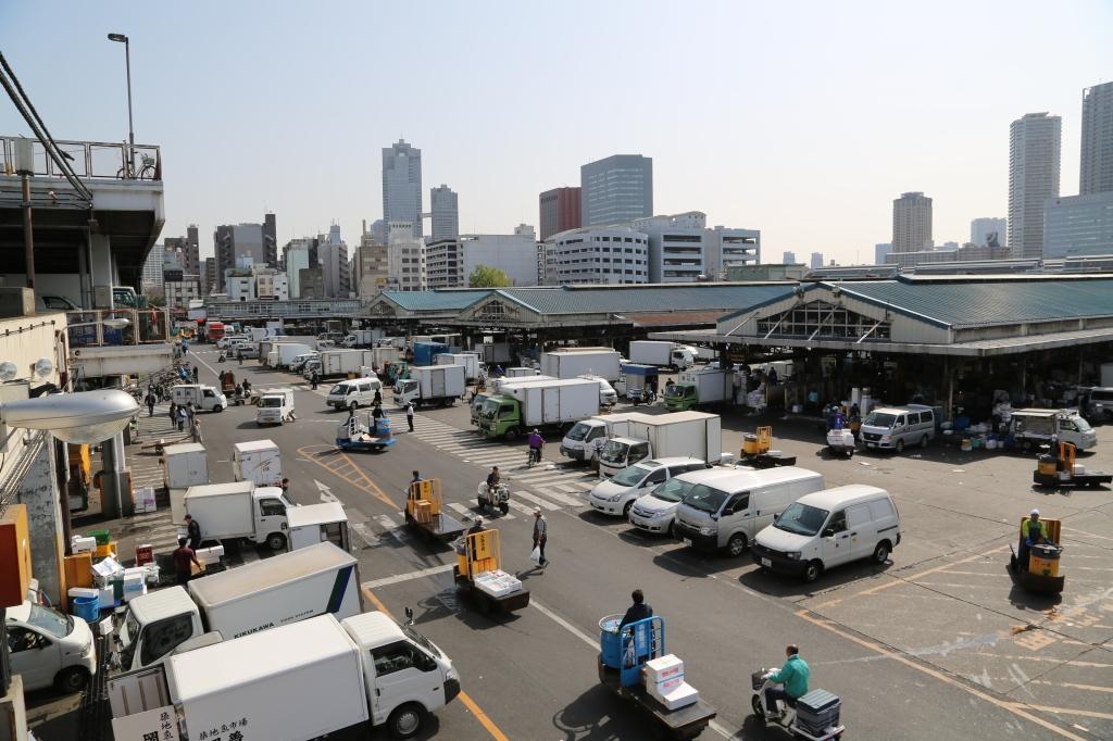 16 Tsukiji Fish Market
