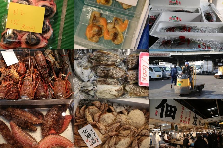 Tsukiji Fish Market 01
