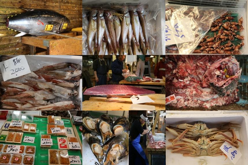 Tsukiji Fish Market 02