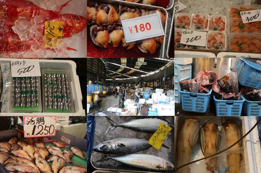 Tsukiji Fish Market 05